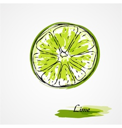 Lime fruit slice vector