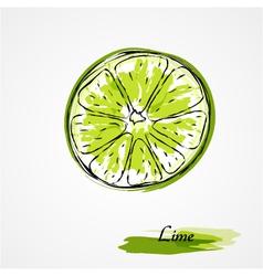 Lime fruit slice vector