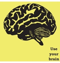 Use your brain vector image