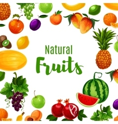 Fruit or vitamin or organic food poster vector