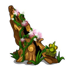 Stump covered with plants flowers grass and toad vector
