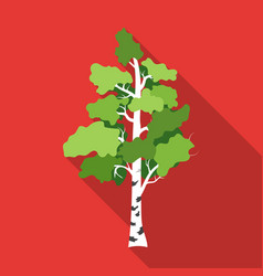 Birch tree icon in flat style isolated on white vector