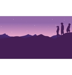 At night meerkat landscape silhouette vector