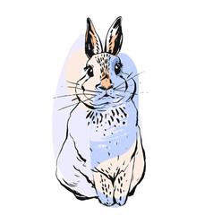 hand drawn abstract realistic drawing bunny vector image vector image