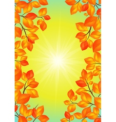 Yellow leaves frame vector