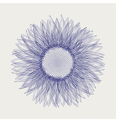 Sunflower sketch design vector