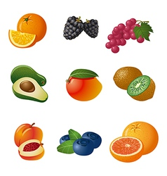 Fruits and berries icon set vector