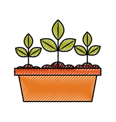 Cultivated plant in pot vector