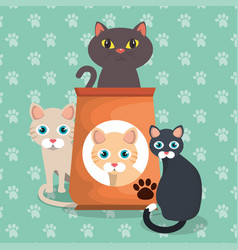 Cute cats with food vector