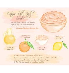 hand drawn of energy citrus salt body scrub recipe vector image