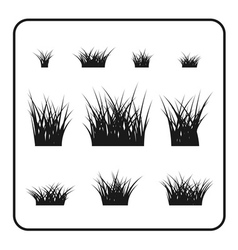 Grass bushes set plant vector