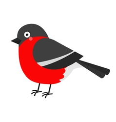 Bullfinch winter red feather bird cute cartoon vector