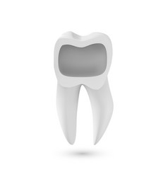 Realistic 3d tooth healthy teeth care product vector