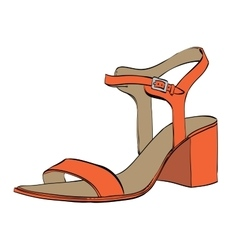 Summer womens high-heeled sandals vector image