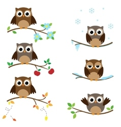 Owls on branches vector