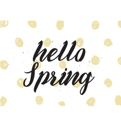 Hello spring inscription greeting card with vector