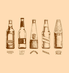 set of beer bottles vector image