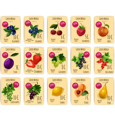 Fruits and berries on price or sale tag card vector