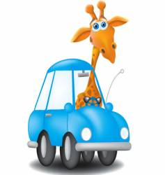 Giraffe driving car vector