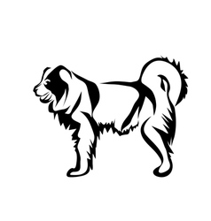 Caucasian shepherd dog vector