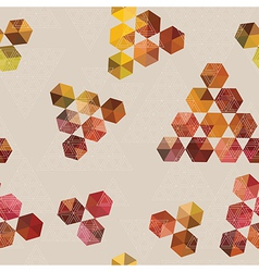 Geometric pattern of hexagons and triangles vector image