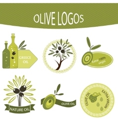 Set of olive oil logos labels badges vector image
