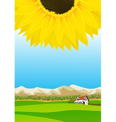 Summer rural landscape vector