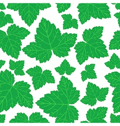 curran leaves pattern vector image