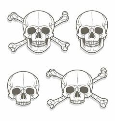 Skull set vector image vector image