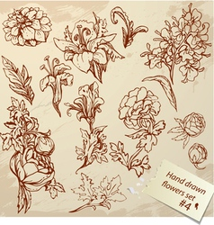 Set of vintage realistic graphic flowers - hand dr vector