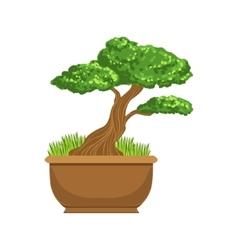 Bonsai japanese culture symbol vector