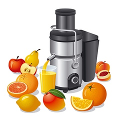 Electric juicer and fruits vector
