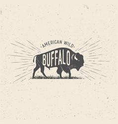 Wild buffalo vector