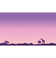 Giraffe landscape at night silhouette vector