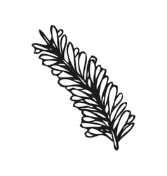 Doodling hand drawn feather vector image vector image