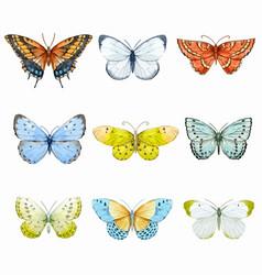 watercolor butterflies set vector image