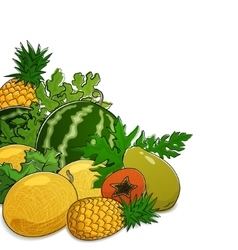Juicy tropical berries and fruits vector