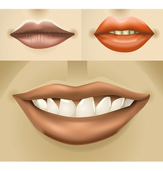 Lips vector image vector image