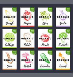 organic vegetables cards set farm eco vector image vector image