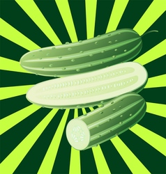 cucumber sectional1 vector image