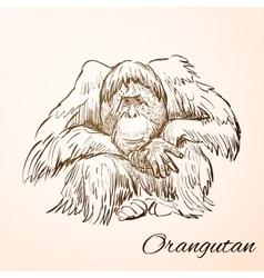 Doodle orangutan vector