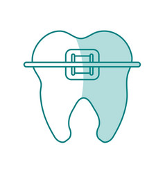 Green shading silhouette cartoon orthodontic tooth vector