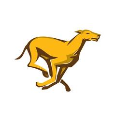 Greyhound dog racing running side vector