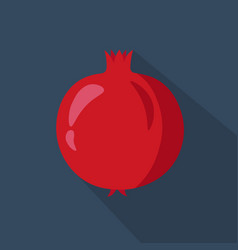 pomegranate cartoon flat icon dark blue vector image vector image