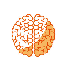 Brain human intellect mental knowledge vector