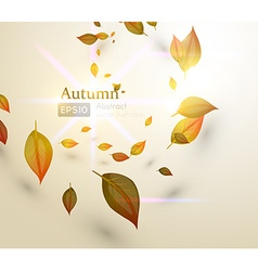 Abstract autumn leaf design vector