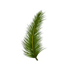christmas decoration tree pine leaf vector image