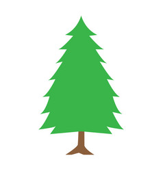 Flat color spruce icon vector