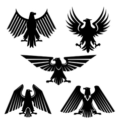 Set of hawk and eagle heraldic falcon icons vector