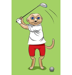 Surikata the golfer vector image vector image